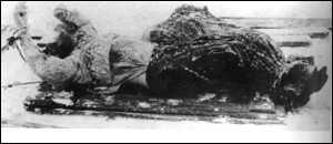 the legendary death of rasputin � the birth of the modern