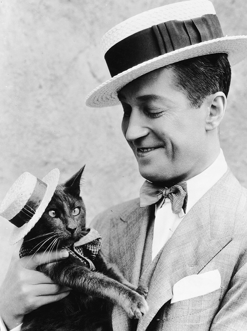 Maurice. Cat. Boater Hats.